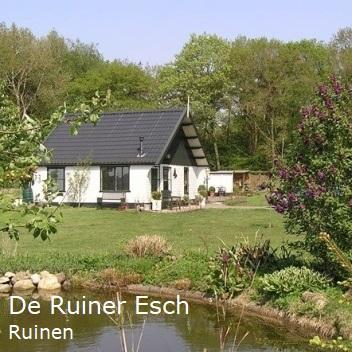 B&B De Ruiner Esch